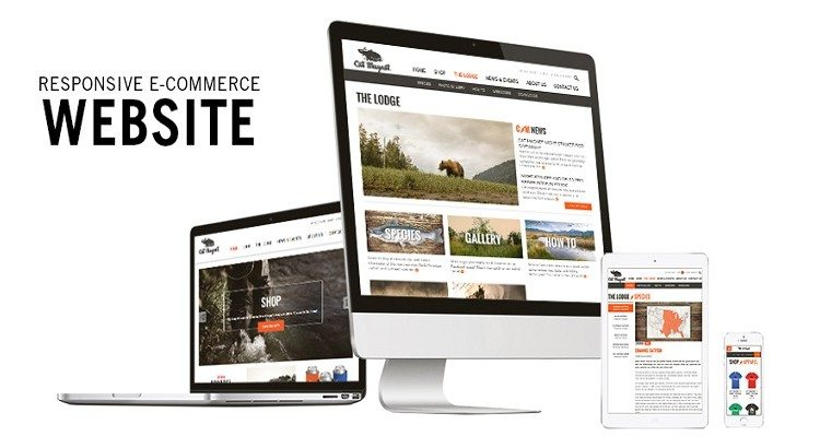 responsive ecommerce website design agency singapore